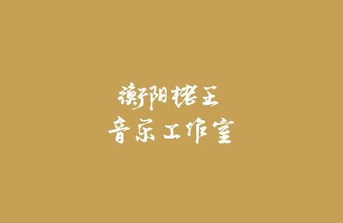 衡阳佬王音乐工作室